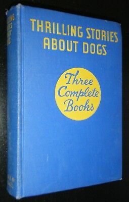 Thrilling Stories About Dogs Belgian Malinois Husky Staffordshire Terrier Dogs
