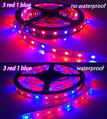 1/5M LED Grow Light Strip Greenhouse Hydroponic Plant Growing Lamp for vegetable