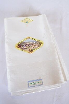 Vintage Double Damask Meadow Bleach Pure Irish Linen Cloth Napkins Set of 12