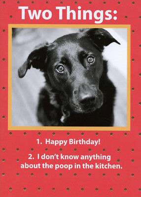 Two Things Recycled Paper Greetings Funny Birthday Card From The Dog