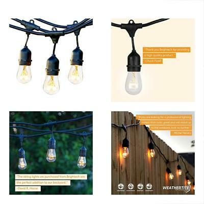 Brightech Ambience Pro Commercial Grade Outdoor Light Strand With Hanging - 48