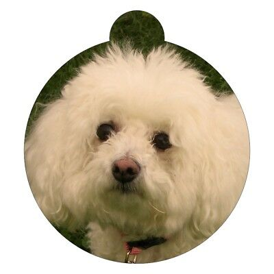 BICHON FRISE Breed Picture Pet ID tag
