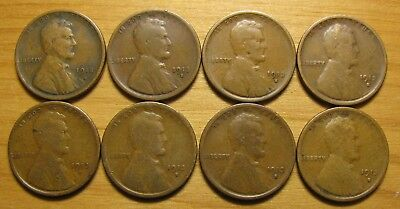 Lot Of (8) 1913 S San Francisco Lincoln Wheat Cents From Penny Collection