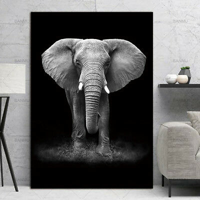 Modern Elephant Canvas Art Poster Print Wall Picture Home Decoration Unframed