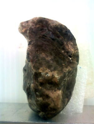 Motley faces figurine. Paleolithic Stone Age. Very rare and special. talisma Art