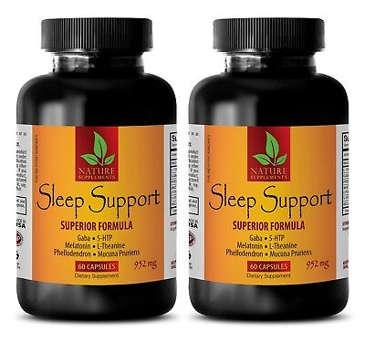 sleeping aids for insomnia - SLEEP SUPPORT FORMULA 952MG 2B - 5-htp l-theanine