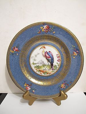 Antique Set Of 12 Royal Doulton Chelsea Birds Plates With Blue Speckled Border