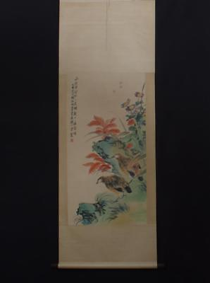 Fine Chinese Hand-painting Painting Scroll Tangyun Marked-Turtledove