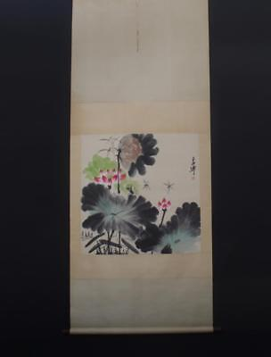 Chinese Hand-painting Painting Scroll Baixuetao Marked-lotus flower&dragonfly