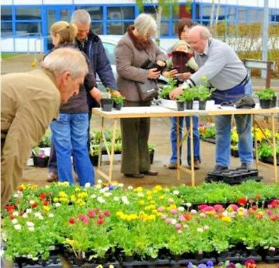 LOCALLY GROWN PLANTS Mini Franchise Package with Exclusive Postcode Area