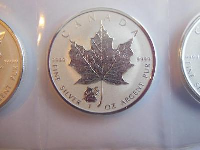 1 Oz Silver Maples 2016 Panda Privy  .9999 Fine Siver Coins, From Mint Sheet !!