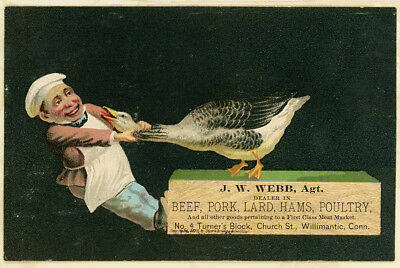 """Black Background Chef Pulls Goose Neck Poultry Antique Victorian Trade Card 5"""""""