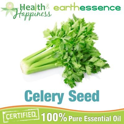 CELERY SEED ~ earthessence Certified 100% Pure Essential Oil