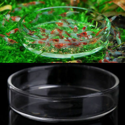 Aquarium Fish Tank Acrylic Shrimp Feeding Food Dish Bowl Feeder Tray Container
