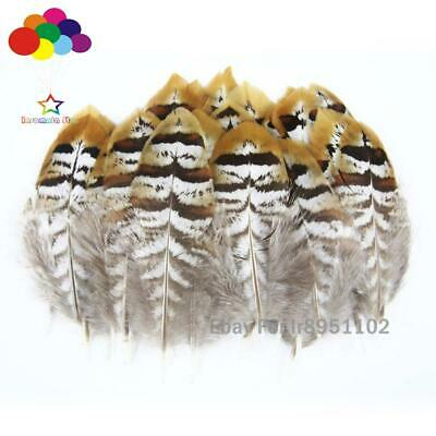 10-100 PCS Natural Pheasant Tail Feathers 2-6 inch/5-15 cm Carnival Diy headress