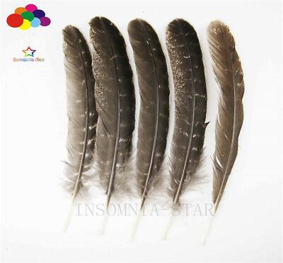 10-100PCS Natural Pheasant Tail Feathers 8-13 inch/20-32 cm Carnival Diy costume