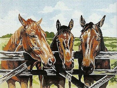 """"""" The THREE AMIGOS"""" HORSE PALS TAPESTRY TO STITCH 60 X 50 CM!"""