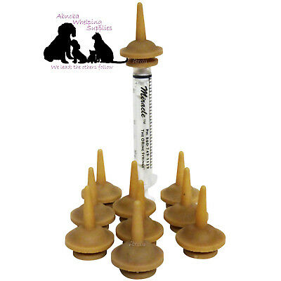 BULK PACK 10 x Miracle Nipple ORIGINAL Designed for kittens, toy breed puppies,