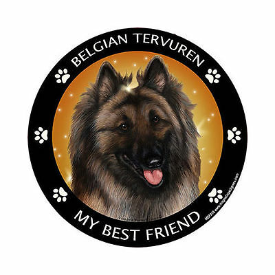 My Belgian Tervuren Is My Best Friend Dog Car Magnet