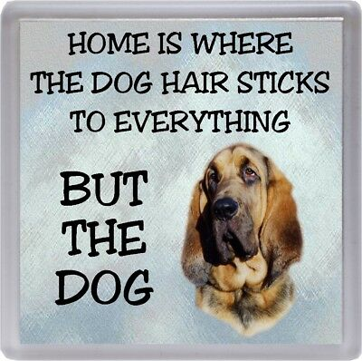 """Bloodhound Dog Coaster """"Home is Where the Dog Hair Sticks ."""" by Starprint"""