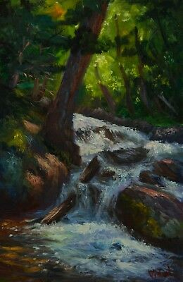 Original landscape Oil Painting hidden waterfall by Vidal