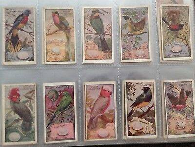 Wills 1912 Birds Of Australasia Full Set of 100 cards in Good Condition