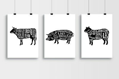 Butchers Pork Cuts of Meat A3 Laminated Poster