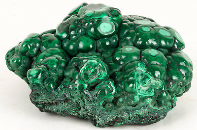 Malachite Polie Origine Congo 2,2Kg Polish Malachite