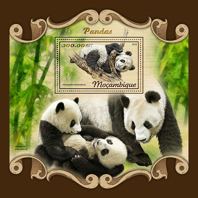 Mozambique 2018 MNH Pandas Giant Panda 1v S/S Bears Wild Animals Stamps