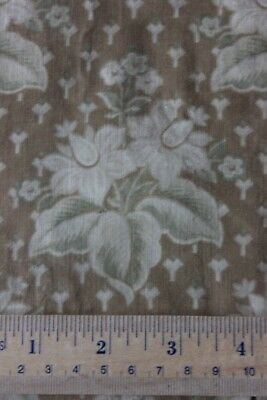 """Antique Shabby Faded Botanical Printed Cotton Fabric ~Quilt,Design~1yd4""""LX14""""W"""