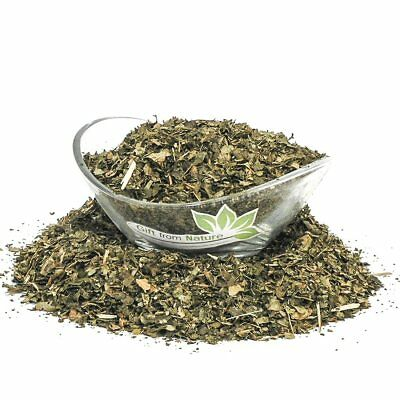 Witch Hazel LEAF Cut ORGANIC Loose Dried HERB Hamamelis virginiana, 25g+
