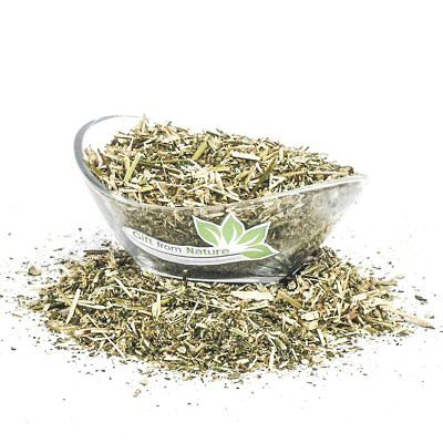 Hemp Nettle Cut ORGANIC Loose Dried HERB Galeopsis tetrahit l., 150g+