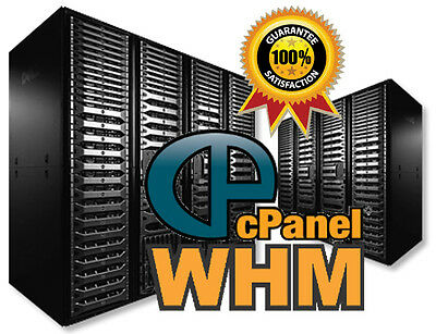 SUPER ALPHA RESELLER Hosting cpanel/WHM Zamfoo Softaculous - $0 99