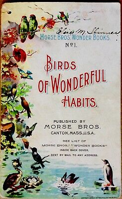 BIRDS OF WONDERFUL HABITS #1 ~1890's Victorian Wonder Book 10 Lithographs RARE
