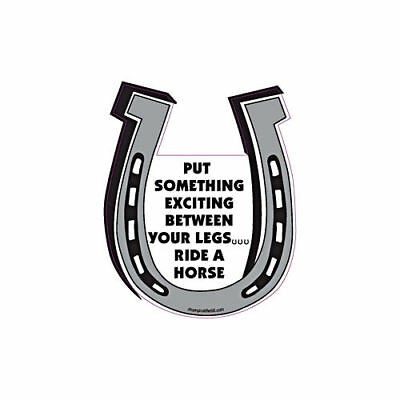Put Something Exciting Between Your Legs Ride A Horse Horseshoe Car Magnet