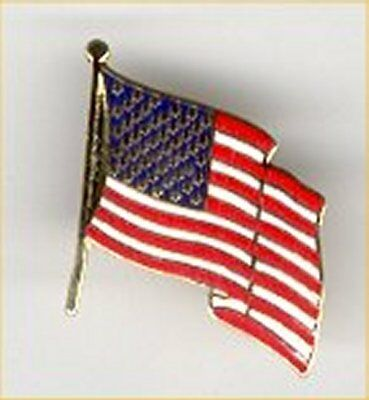 US Flag Pin - 24 CT Gold Plated Cloisonne Lapel  Pin