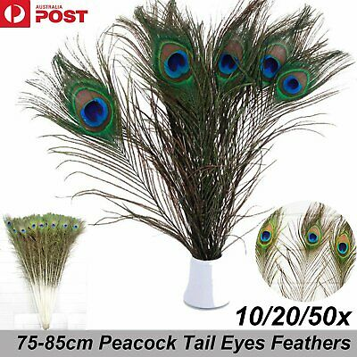 10/20/50x 75-80cm Beautiful Peacock Tail Eyes Feather Feathers Wedding Party DIY