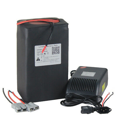 48V 20AH Lithium LiFePO4 Battery Pack Power for 1000W E-bike with 5A Charger PCB
