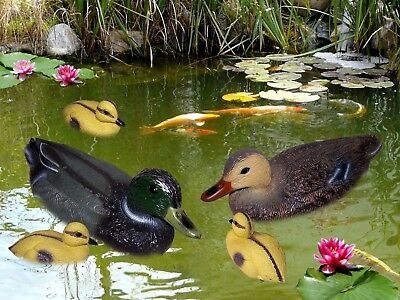 35cm Pond Duck,Floating Duck for Garden Pond, Decor Decoration Floating Animal