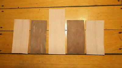 KANGAROO tail LEATHER VEG TANNED NATURAL 5 @ 150 x 75mm- tag case strop belt