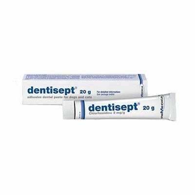 Dentisept Adhesive Dental Paste for Cats & Dogs - 20g