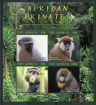 Gambia 2018 MNH African Primates Mandrill 4v M/S Monkeys Wild Animals Stamps