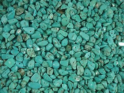 Gemstone Chips 50g Green Turquoise Jewelry Beads Jewellery Necklace FREE POSTAGE