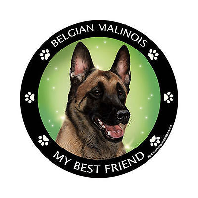 My Belgian Malinois Is My Best Friend Dog Car Magnet