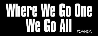 3x8 inch Where We Go One We Go All Bumper Sticker - q anon qanon reddit trump us