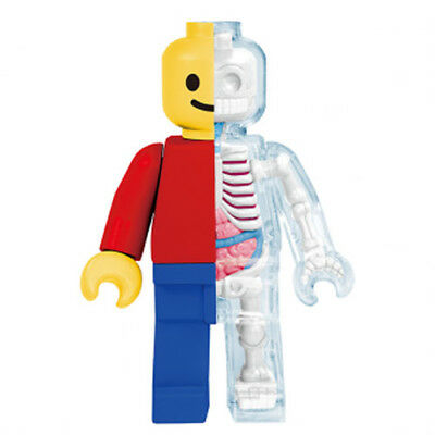 XXRAY – Brick Man Classic 4D Master by Jason Freeny Funny Anatomy [12cm] NEW
