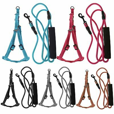 Max Care Adjustable Small Dog Rope Lead Safety Harness Set Puppy Pet Soft