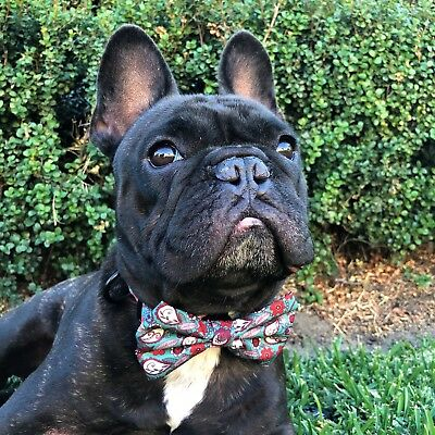 Dog Bow-Tie in Henna Print by Paws Pet Wear