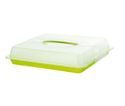 PLASTIC LARGE CAKE Box Storage Carrier Container Green Lockable Lid