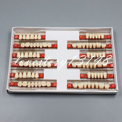 84 Pcs Dental Acrylic Resin Denture Teeth VITA Color A2 Upper+ Lower Shade 3 Set